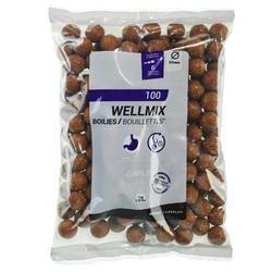 Boilies voor karpervissen Wellmix 20 mm 1 kg look