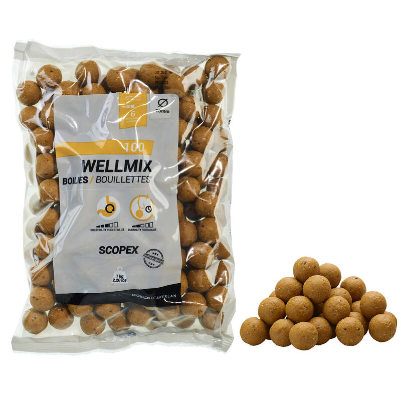Boilies voor karper Wellmix 20 mm 1 kg scopex