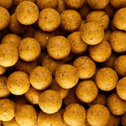 bouillettes pêche de la carpe WELLMIX PINEAPPLE 20mm 1 KG