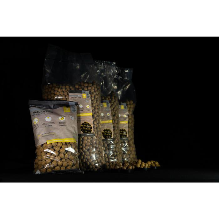 Bouillettes pêche de la carpe NATURALSEED 24mm 10kg Mussel