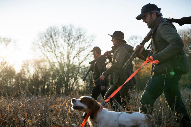 100 dog lead orange