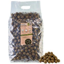 Boilies voor karpervissen Natural Seed 24 mm 10 kg mosselen