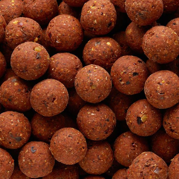 Bouillettes pêche de la carpe NATURALSEED 24mm 10kg Spicy