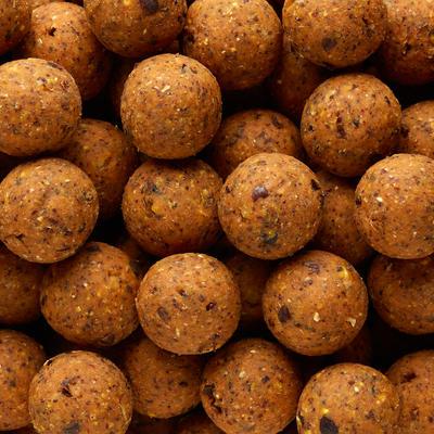 Bouillettes pêche de la carpe NATURALSEED 24mm 10kg Gammarus