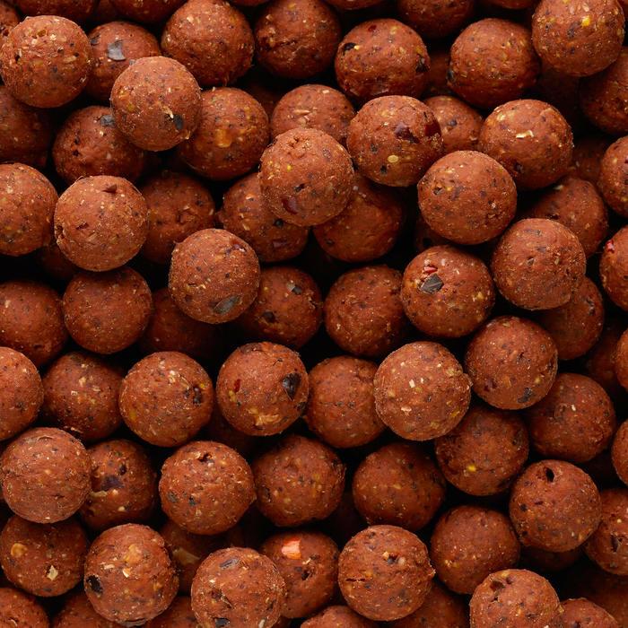 Bouillettes pêche de la carpe NATURALSEED 16mm 10kg Spicy