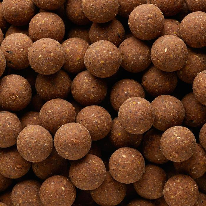 Bouillettes pêche de la carpe XTREM 900 20mm 1kg Ail/Foie