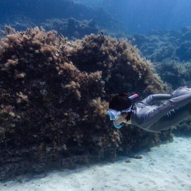 Come scegliere le pinne per la pesca subacquea?