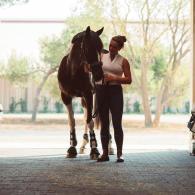 vérifiez le physique et le mental de votre cheval