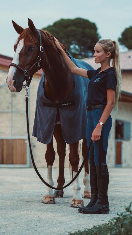 comment_choisir_chemise_cheval.ap1_.jpg