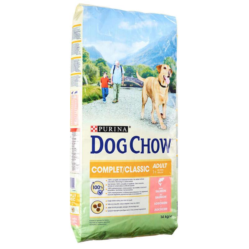 Alimentaţie câine Vanatoare - Crochete câini SOMON ADULT  DOG CHOW - Caine de vanatoare