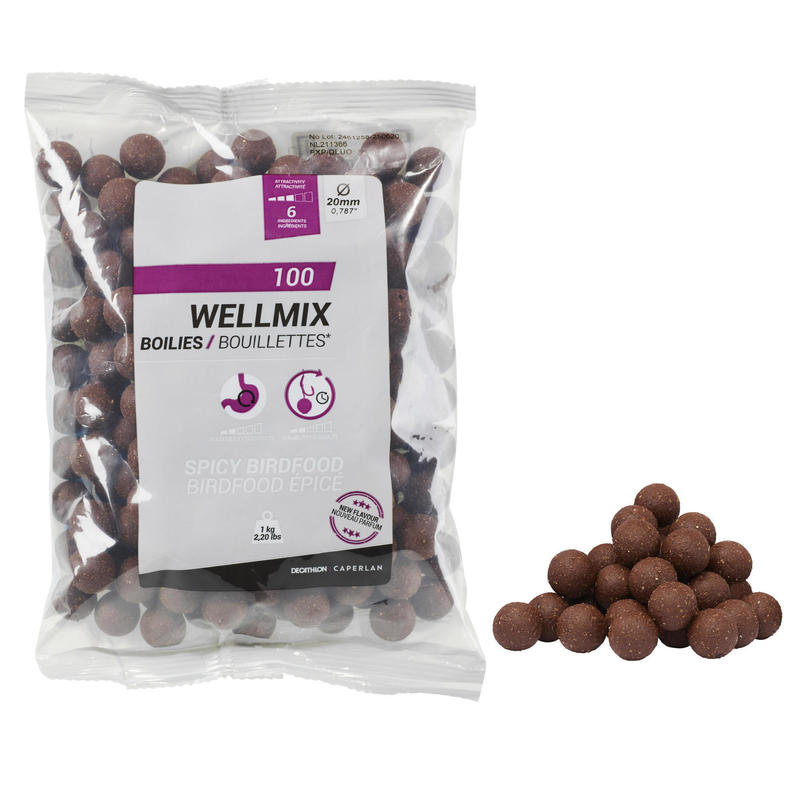 CARP FISHING BOILIE WELLMIX 20 MM 1 KG - SPICY BF
