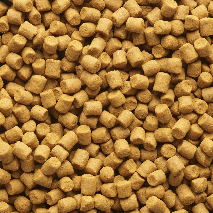 Pellets pêche de la carpe Xtrem Carp Pellets 3kg 4mm Scopex