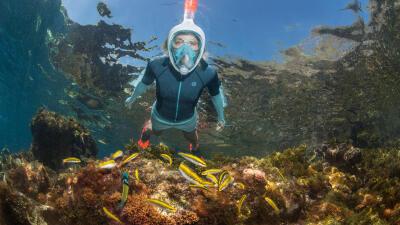 snorkelingpicture.jpg