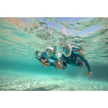 snorkeling tips subea
