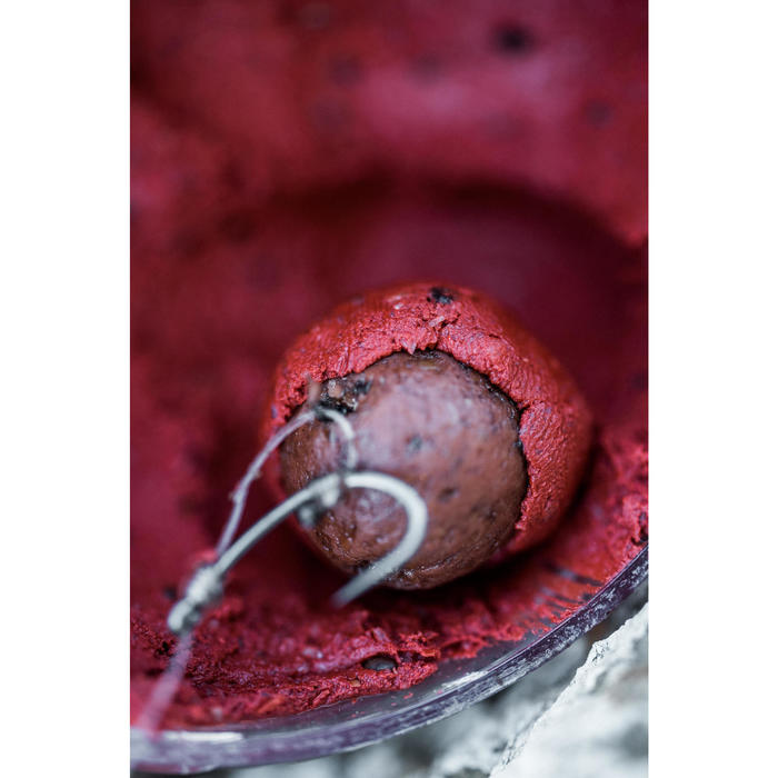 Pâte d'enrobage Ail-Foie Pêche de la carpe