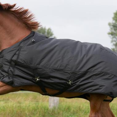 Come scegliere la coperta per il cavallo