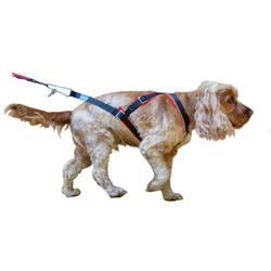 Hondentuigje voor canicross bikejöring Openback rood