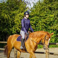 Women's Horse Riding Jacket 900 - Navy