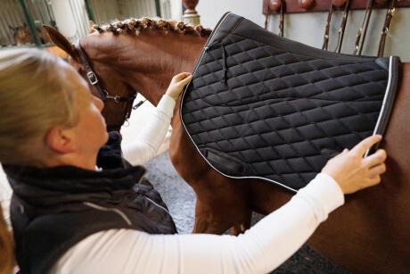 tapis-jumping-noir-cheval-équitation