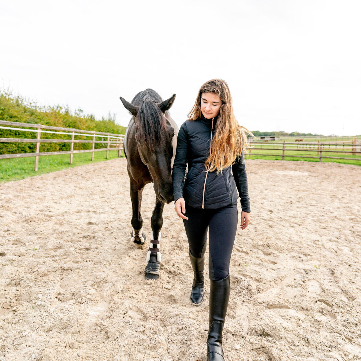 conditionnement-cheval