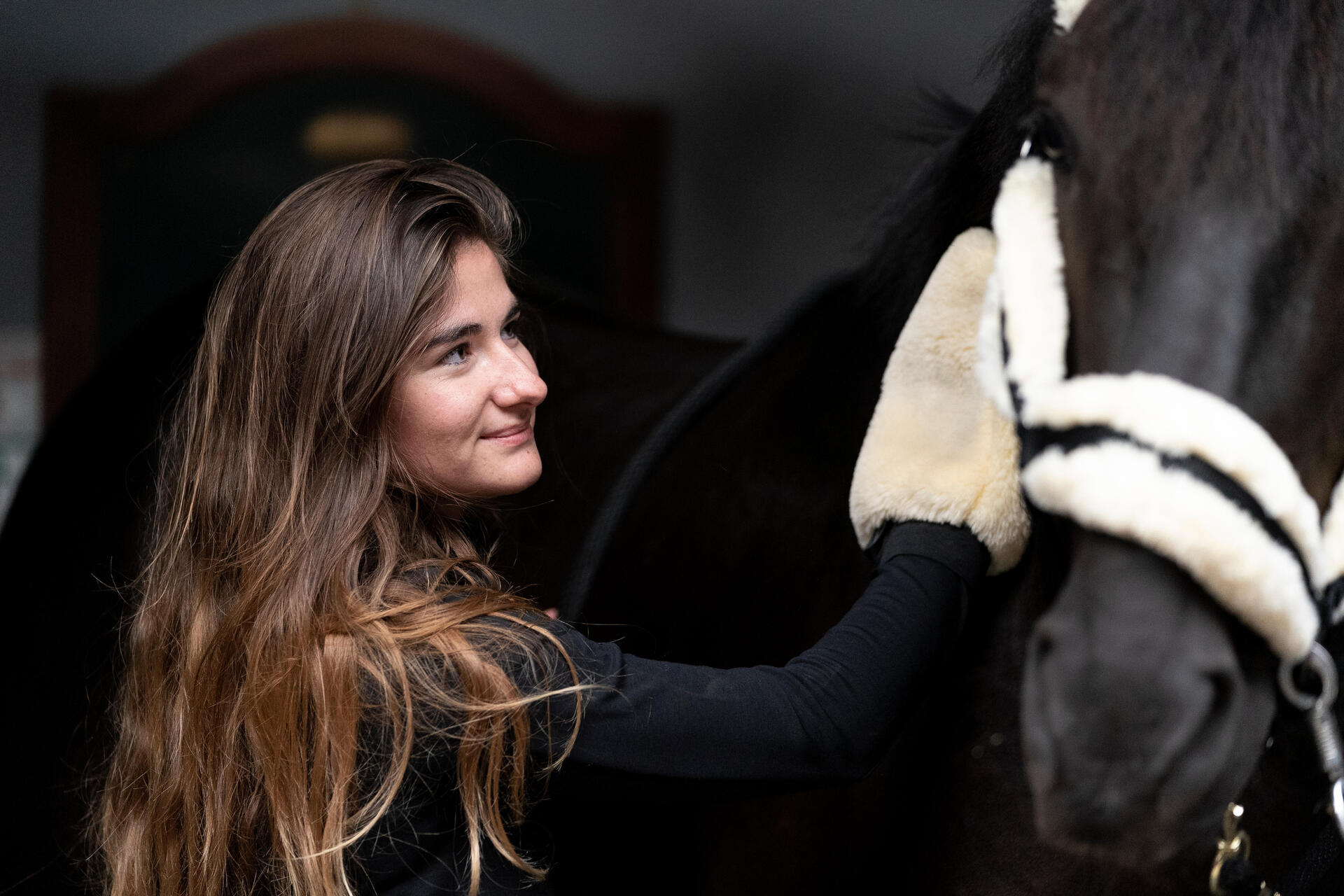FOUGANZA lookbook soins du cheval
