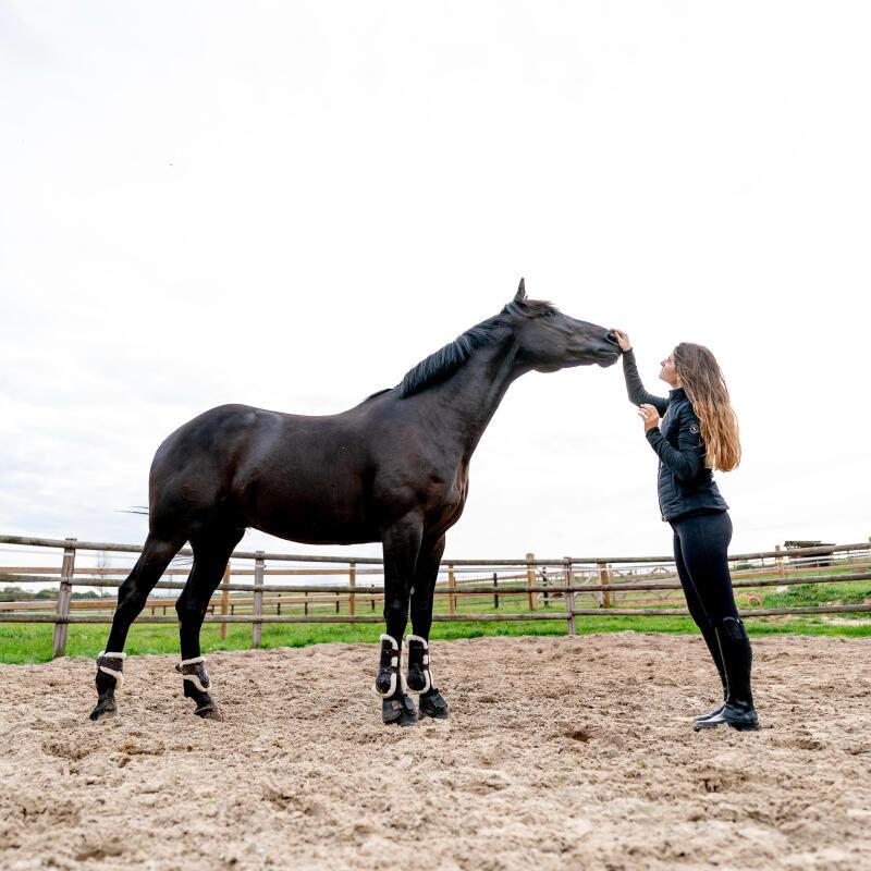 straffen-belonen-paardrijden