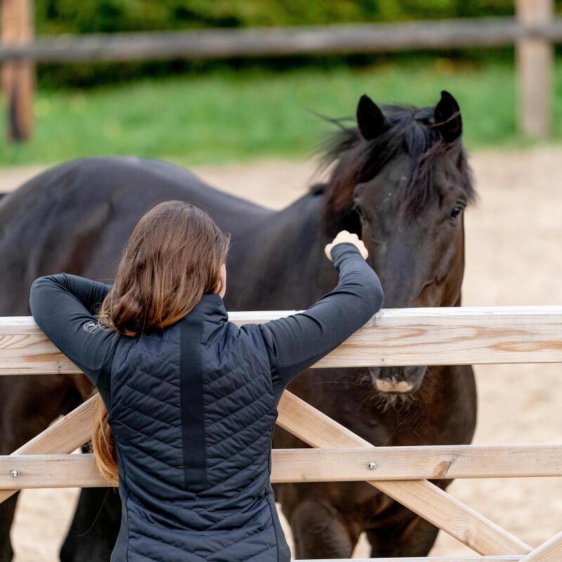 paard-gezondheid-massage voor je paard