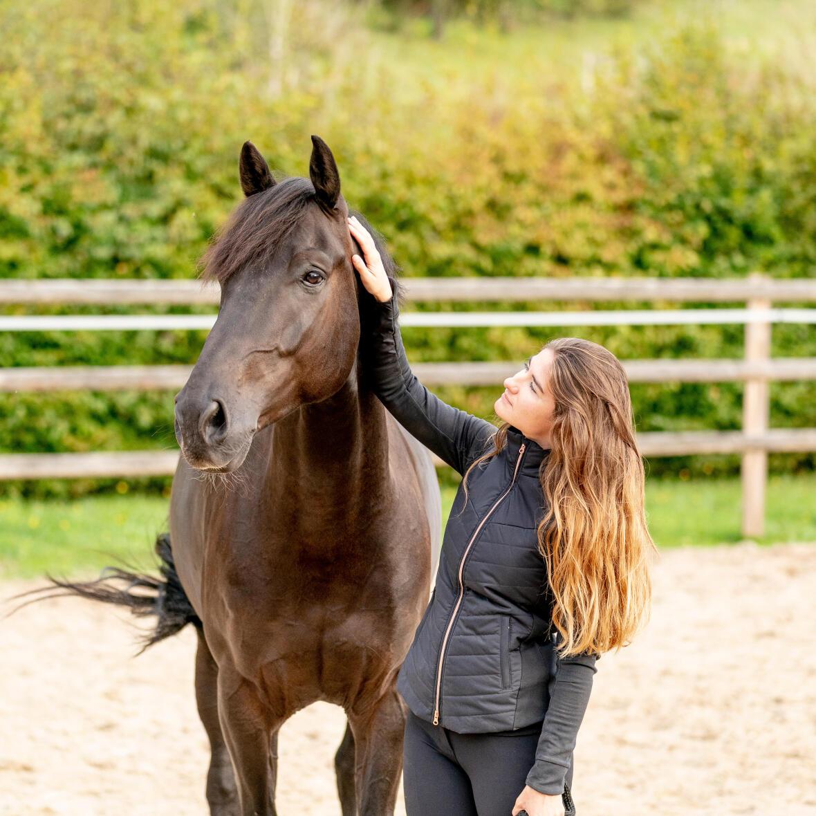 renforcement-punition-cheval-équitation-conditionnement-R+-R-