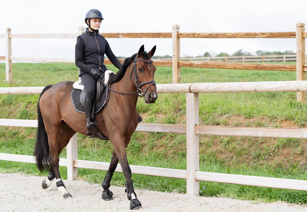 Comment travailler la souplesse latérale et l'incurvation de votre cheval ?