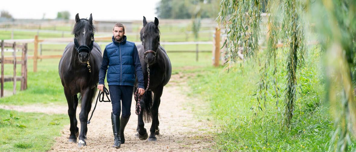 Bestaat de perfecte plaats om je paard te stallen?