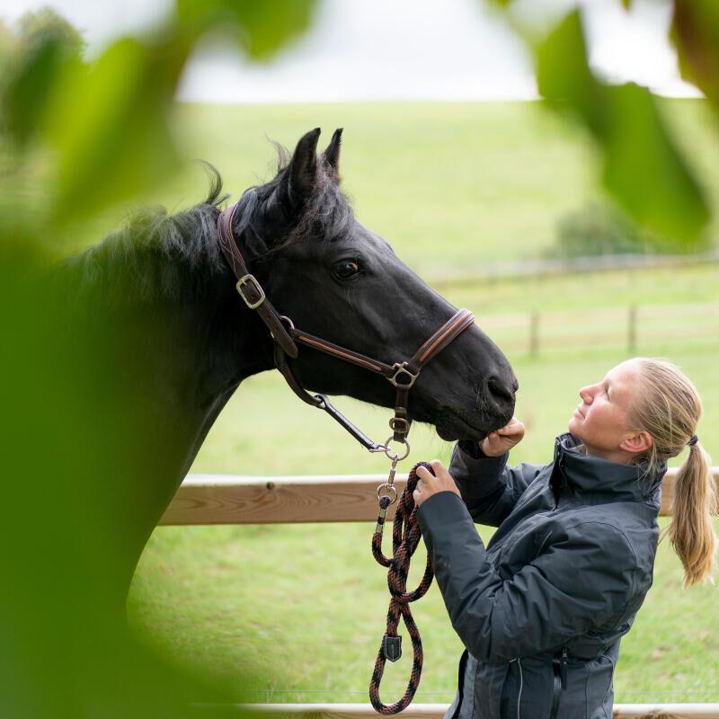 hebergement_cheval