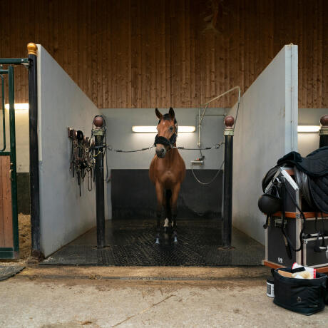 travail-cheval-hiver-couvre-reins