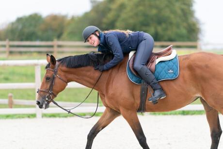 récupération-hiver-équitation