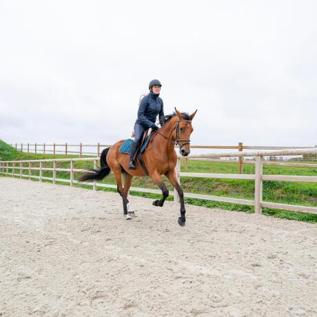 gérer-chevaux-chauds-hiver
