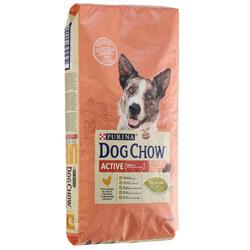 Crocchette cane adulto DOG CHOW ACTIVE pollo 14 kg