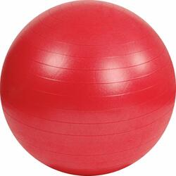 Gymball be bm 55 cm