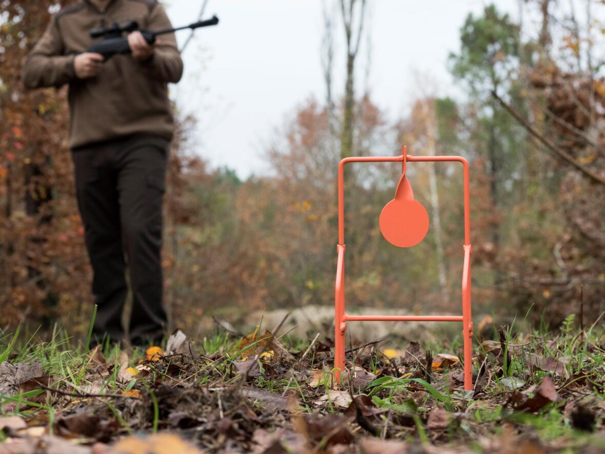 Le plinking tir à carabine