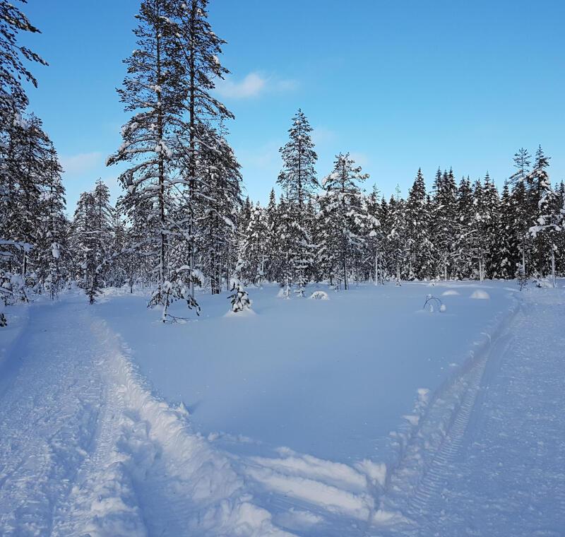paysage jura ski de fond
