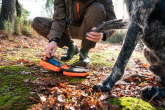 Soignez votre chien en urgence c'est possible grâce à la trousse de secours Solognac