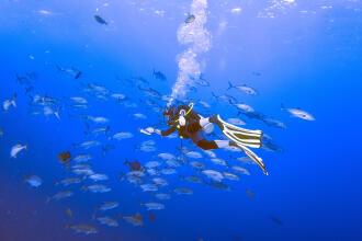 Scuba diving pentru începători: Ghid complet