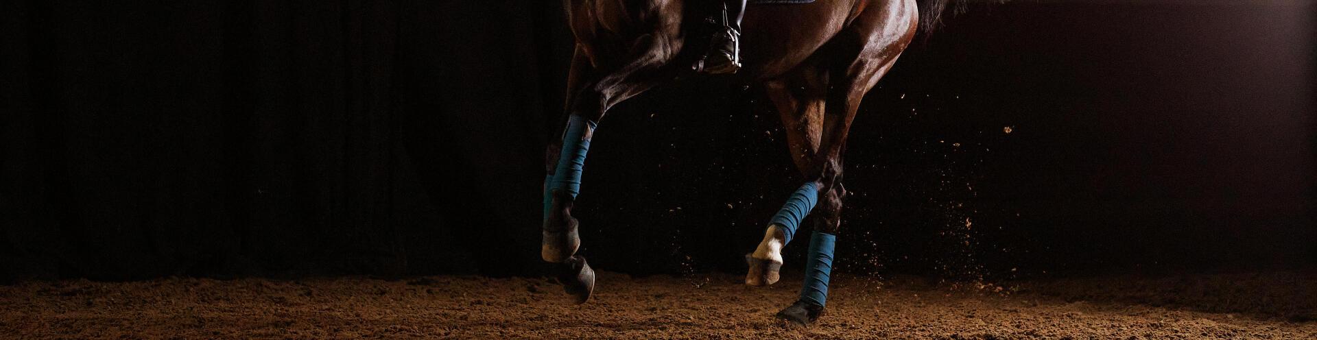 lookbook cheval