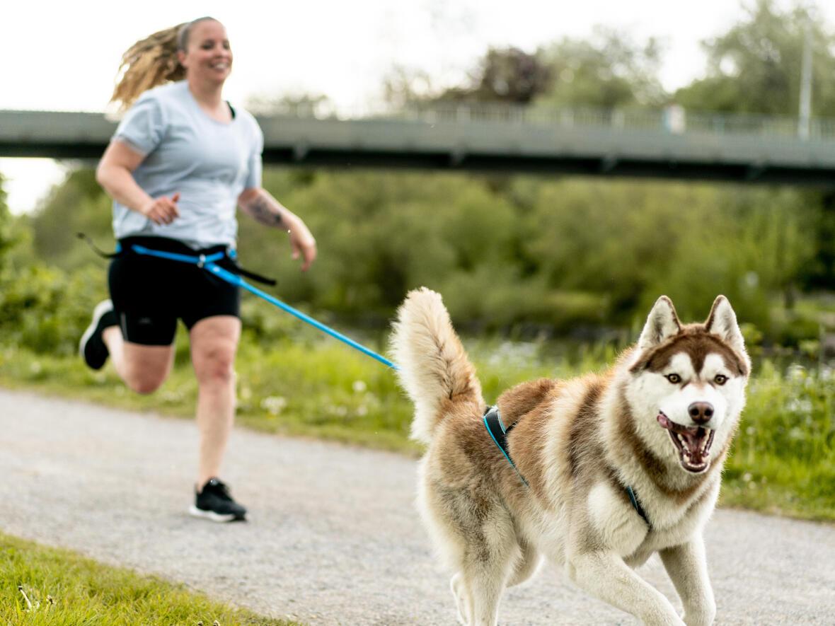 6 bonnes raisons de courir avec son chien