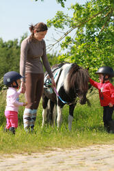 Rijbroek voor ponyrijden - 214957