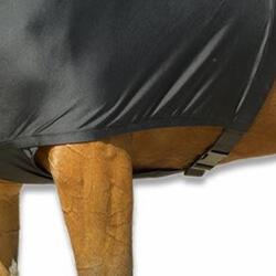 Schouderbescherming ruitersport pony en paard - 272096