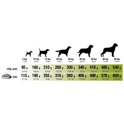 Hondenvoer Adult Regular 12 kg - 273203