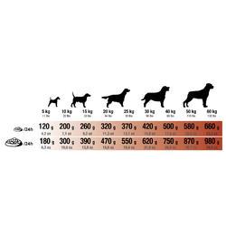 Hundefutter Adult Intense 2 kg