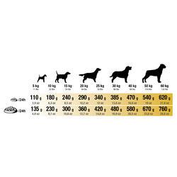 Hondenvoer Adult Active 12 kg - 273224