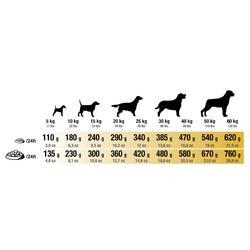 Hondenvoer Adult Active 12 kg