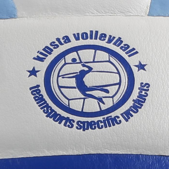 Ballon de volley-ball V300 blanc et bleu - 298114