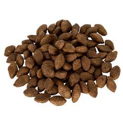 Pienso Perro Caza Solognac Alimentación Adulto Actividad Intensa 12 kg